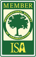 ISA_Member