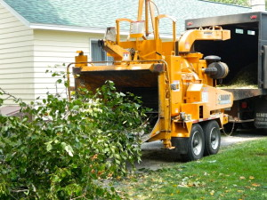 High Peaks Tree Removal Chipper