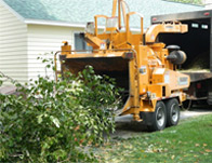 tree removal and chipping