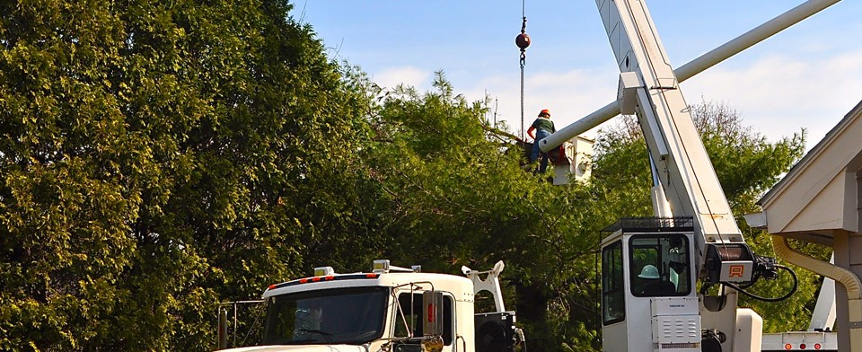 high peaks tree removal bucket truck