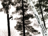 crane-boom-shot